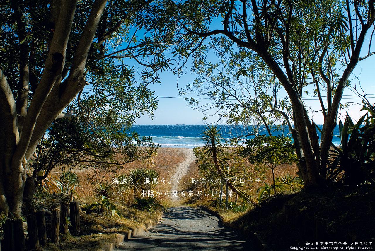 http://threetroy.sakura.ne.jp/blogdata/ikku1280/irita.jpg